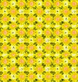 picture of parallelogram  - background pattern made from piece of flower in vintage style created from filter technique - JPG