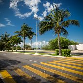 picture of pedestrian crossing  - Pedestrian crossing on tropical street road - JPG