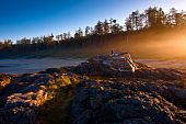 image of pacific rim  - This photo was taken in a morning of Pacific Rim National Park - JPG