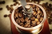 pic of coffee coffee plant  - Closeup picture of coffee bean grinder and coffee bean - JPG