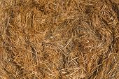 stock photo of hay bale  - Piled hay bales on a field against blue sky at sunset time - JPG