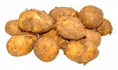 stock photo of dirty  - Group of raw dirty new potatoes isolated on a white background - JPG