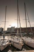 pic of marina  - Yachts in Marina Bay in Rimini - JPG