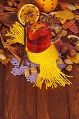 stock photo of christmas spices  - Spruce branch - JPG