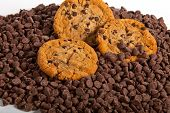 Cookies on a bed of chocolate chips