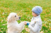 picture of laika  - Boy playing in autumn park with a golden retriever - JPG
