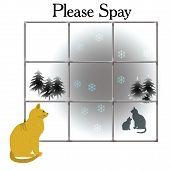 please spay poster