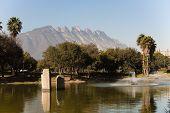 Monterrey park landscape