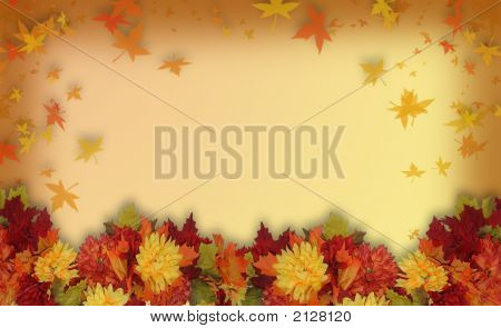 Picture or photo of photoshop composition of colorful fall flowers for