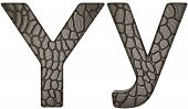 Alligator Skin Font Y Lowercase And Capital Letters