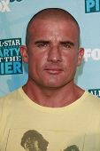 SANTA MONICA - JULY 14: Dominic Purcell at the Fox TCA Summer Party in Santa Monica, California on July 14, 2008.
