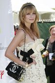 LOS ANGELES - JUNE 8: Mischa Barton at a 'A Time For Heroes' Celebrity Carneval benefiting the Eliza