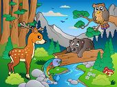 Forest scene with various animals 1 - vector illustration.