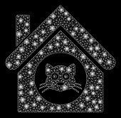 Flare Mesh Cat House With Glow Effect. Abstract Illuminated Model Of Cat House Icon. Shiny Wire Fram poster