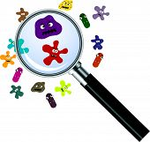 magnifier and germs