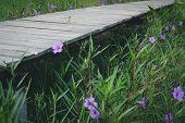 Wooden Bridge Footbridge Walkway Pathway Along Flower Field poster