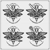Cricket, Baseball, Lacrosse And Hockey Logos And Labels. Sport Club Emblems With Wasp. Print Design  poster