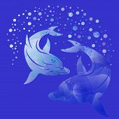 Dolphins Sea Creatures Dolphin Ocean Sea Illustration Vector poster