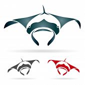 pic of stingray  - Vector image of an stingray on white background - JPG