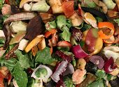 stock photo of responsibility  - Composting pile of rotting kitchen fruits and vegetable scraps as a banana peel orange and onion garbage waste for recycling as an environmentaly responsible composte that enriches soil in a garden - JPG