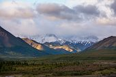 Denali NP landscapes