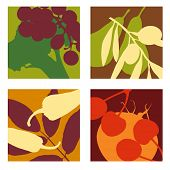 abstract vector fruit and vegetable designs set 1