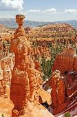 Dramatic Hoodoos Along A Canyon Trail