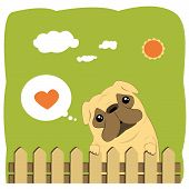picture of pug  - Cartoon Illustration of a Cute Pug Dog - JPG