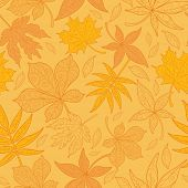 Seamless Patterned Maple Leaves