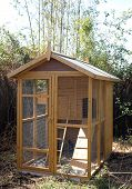 pic of hen house  - wooden hen house in a little garden - JPG