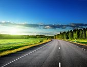 picture of horizon  - Asphalt road in forest - JPG