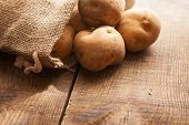Fresh harvested potatoes spilling out of a burlap bag, on a old wooden palette.