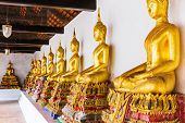 Golden buddha in temple