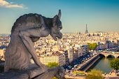 foto of gargoyles  - Gargoyle on Notre Dame Cathedral - JPG