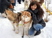 stock photo of siberian husky  - Young woman and dogs siberian husky on snow winter