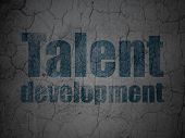 Education concept: Talent Development on grunge wall background