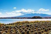 Mountain fuji with lake kawaguchi