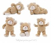 stock photo of bear  - Set of positions of a stuffed teddy bear - JPG