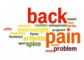 pic of hernia  - Back pain word cloud image with hi - JPG
