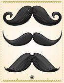 3 premium mustaches