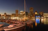 Baltimore Marina At Night