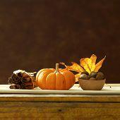 fall still life pumpkin spice