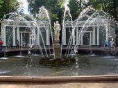 PETERHOF-SAINT-PETERSBURG-Russia-August-5-2012,Peterhof Adam fountain