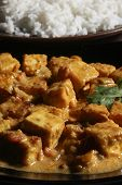 Paneer Korma with Rice from India