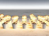 Rows Of Light Bulbs With Warm Light