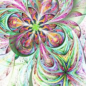 Colorful Two Fractal Flower