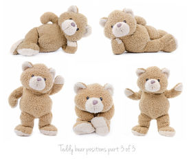 stock photo of stuffed animals  - Set of positions of a stuffed teddy bear - JPG