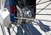 Close up view of rear bicycle wheel