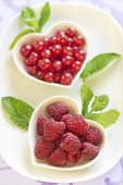 Fresh raspberries and red currant