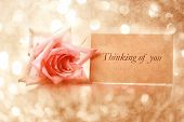 Thinking Of You Message With Vintage Rose
